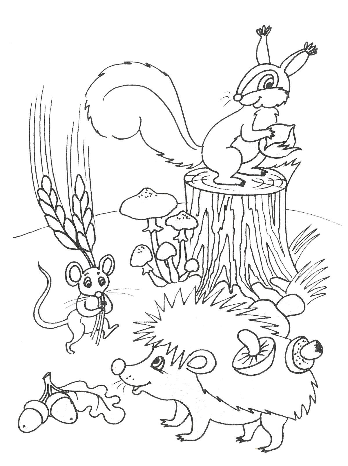 осенние картинки для детей раскраски