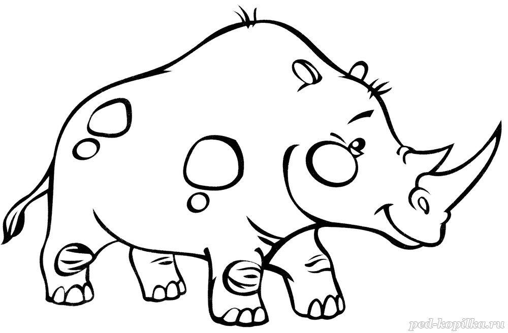 носорог раскраска для детей