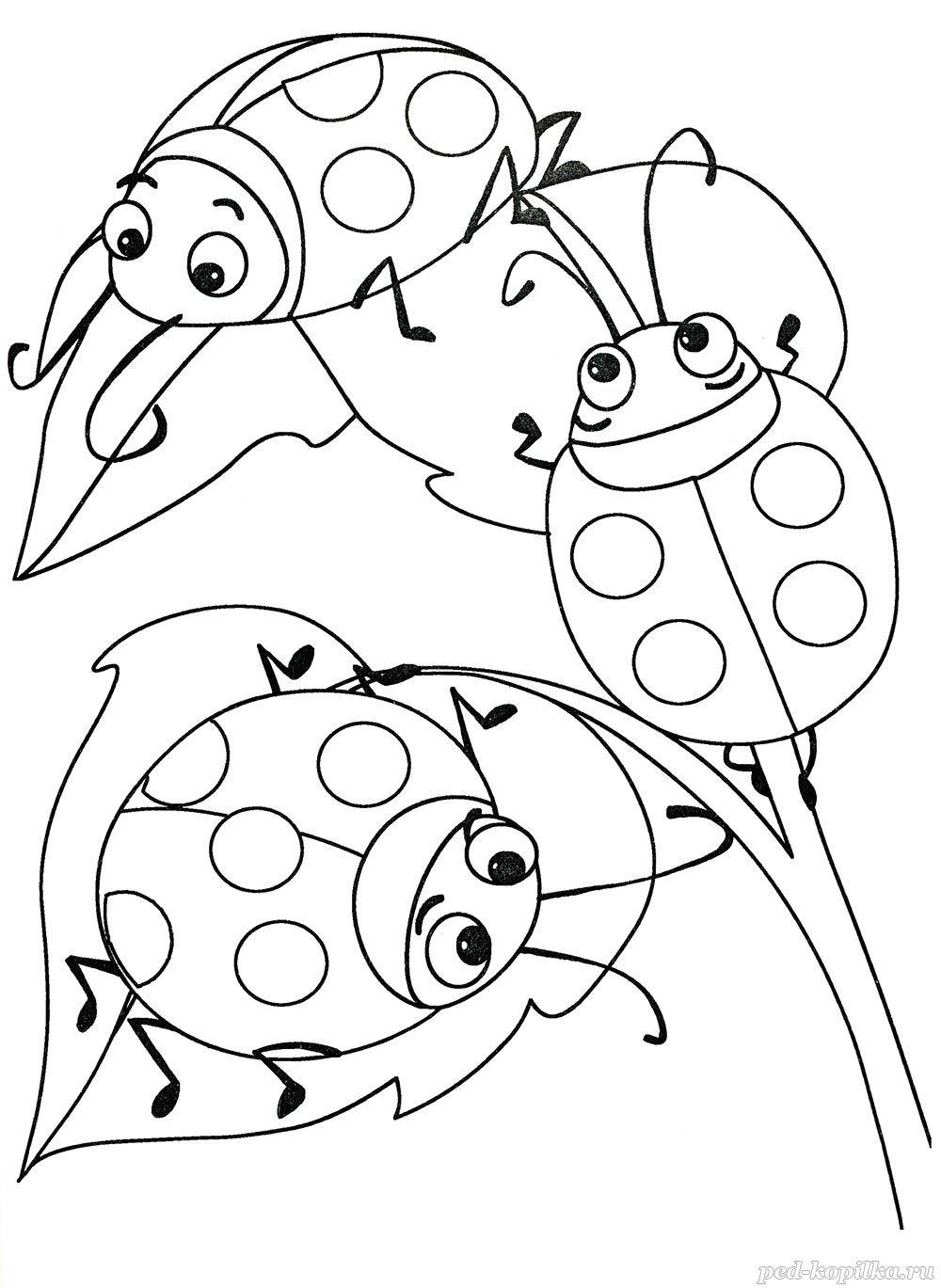 летняя раскраска для дошкольников от 3 лет