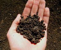 Основные типы почвы
