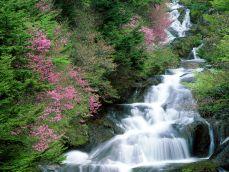 Загадки о воде в природе для школьников