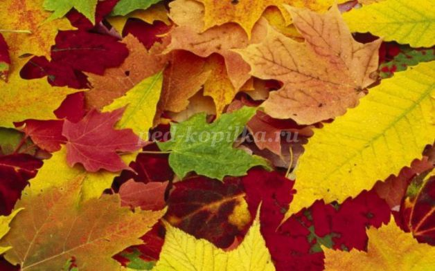 17838_7a76b066486be35740de1bae56d48f2d.jpg Осенняя аппликация из бумаги: аппликация Дождик