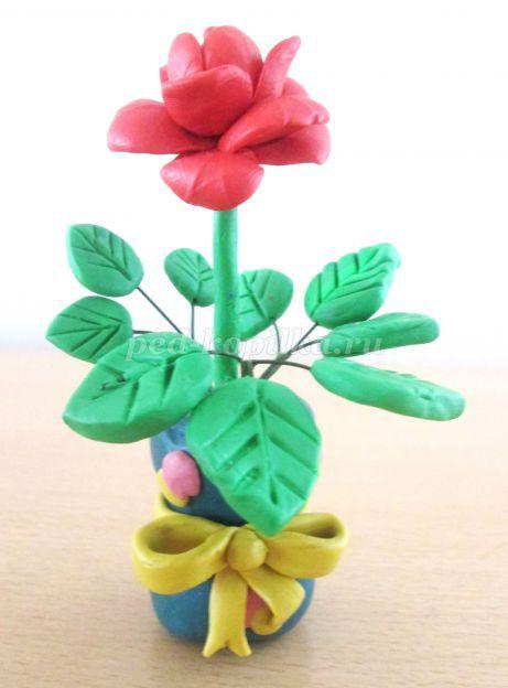 7337_63cc92cab0377fe7d4ab669d7d7f761a.jpg Как из пластилина слепить розочку. Как сделать розу из пластилина: лепим цветок своими руками