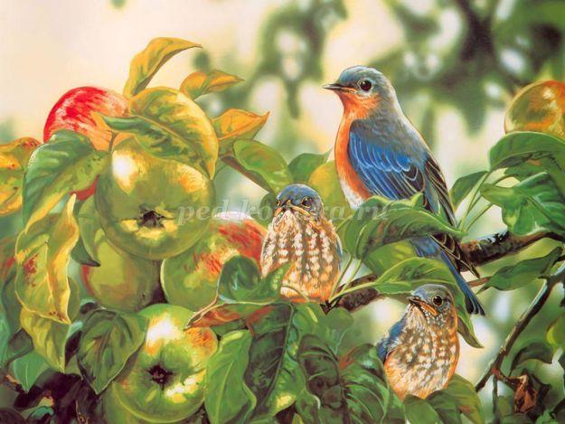 Запела птицей весна предложение запели